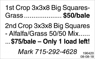 1st Crop 3x3x8 Big Squares-Grass