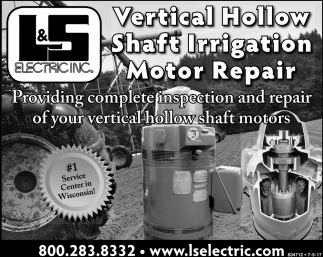 Vertical Hollow Shaft Irritation Motor Repair