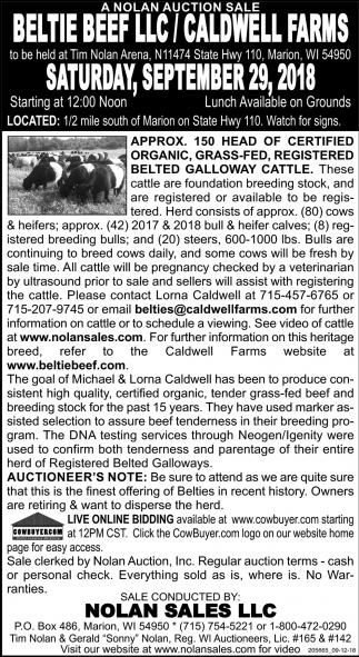 Beltie Beef LLC