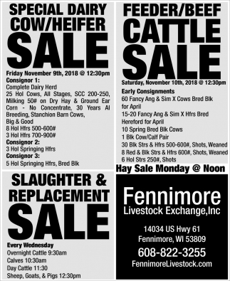 Special Dairy Cow/Heifer Sale