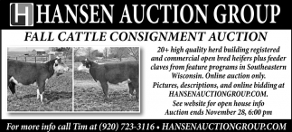 Fall Cattle Consignment Auction