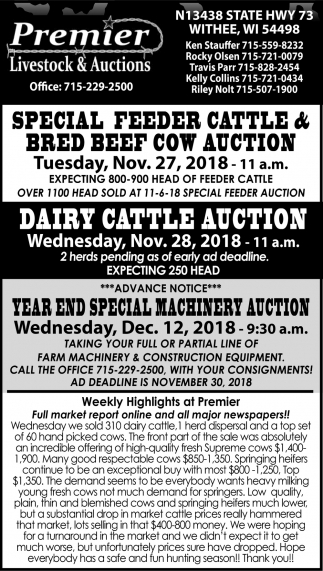 Special Feeder Cattle & Bred Beef Cow Auction