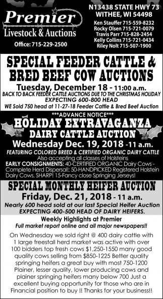 Feeder Cattle Auction