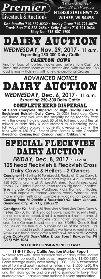 Special Heifer Auction