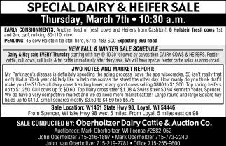 Special Dairy & Heifer Sale