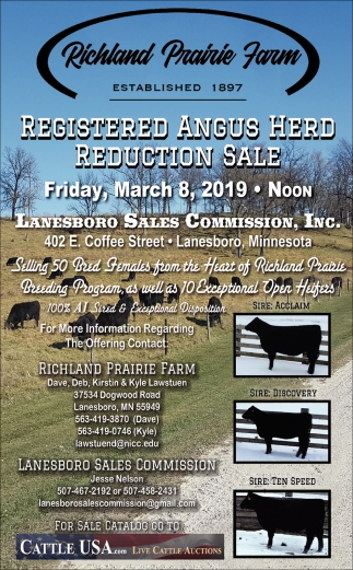 Registered Angus Herd Reduction Sale