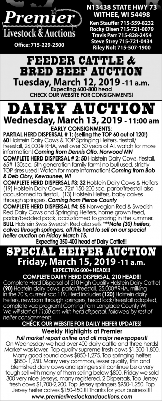 Feeder Cattle & Bred Beef Auction