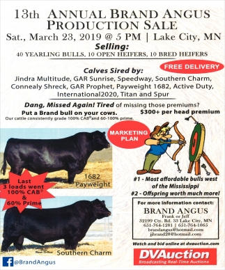 Annual Beef Bull Sale