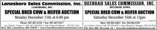 Special Bred Cow & Heifer Auction