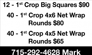 1st Crop Big Squares $90