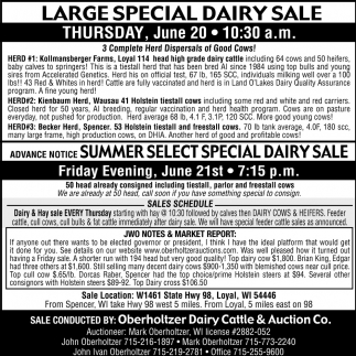 Large Special Dairy Sale