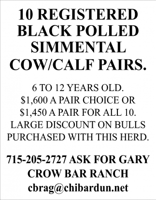 10 Registered Black Polled Simmental Cow/Calf Pairs
