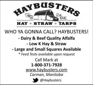 Who Ya Gonna Call? Haybusters!