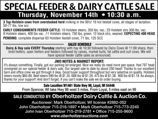 Special Feeder & Dairy Cattle Sale
