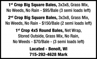 1st and 2nd Crop Big Squares Bales