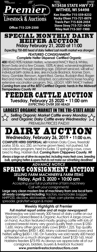 Special Montly Dairy Heifer Auction