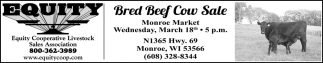 Bred Beef Cow Sale