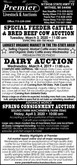 Special Feeder Cattle & Bre Beef Cow Auction