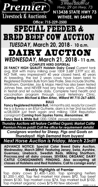 Special Feeder & Bred Beef Cow Auction