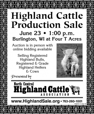 Highland Cattle Production Sale