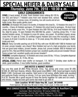 Special Heifer & Dairy Sale