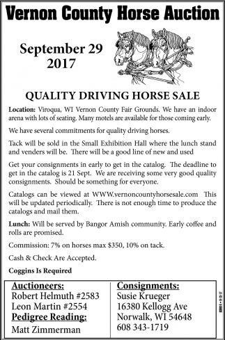Quality Driving Horse Sale